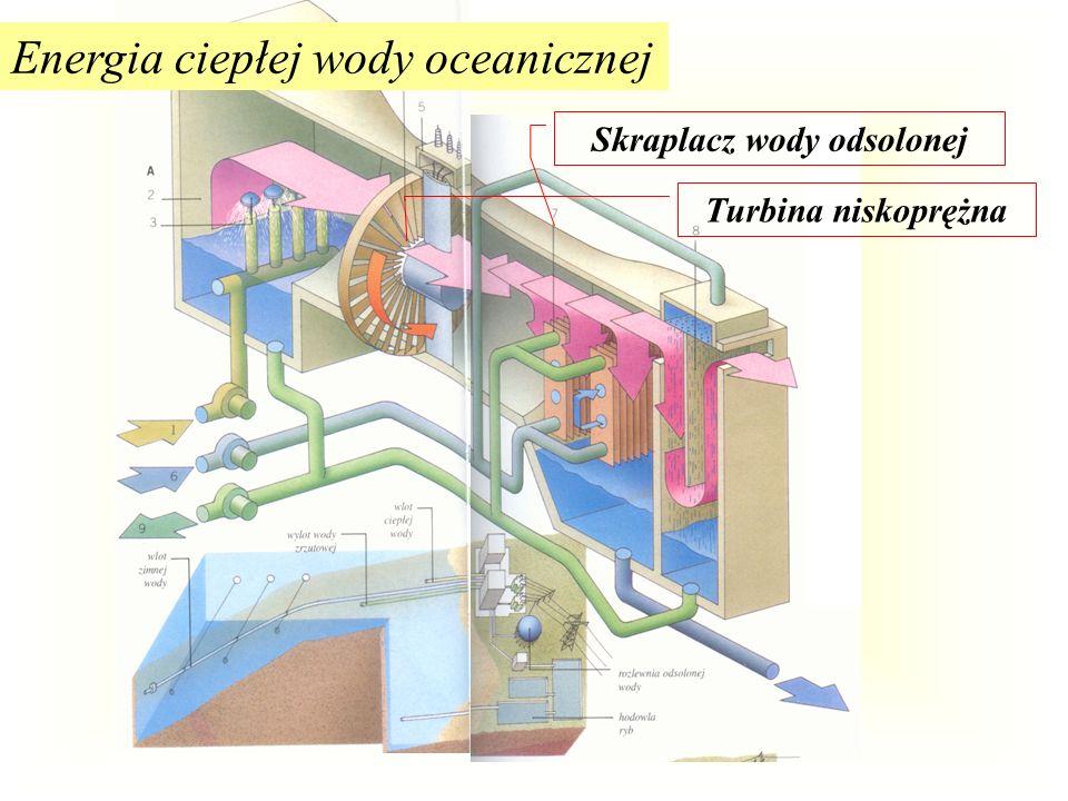 Energia ciepłej wody oceanicznej zdjęcie: próbny projekt