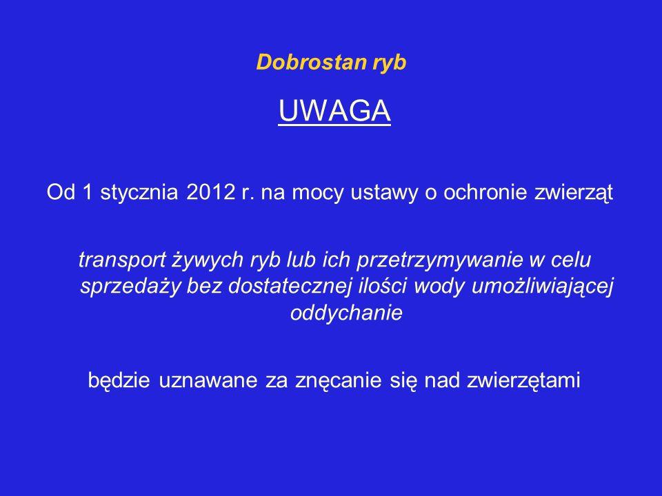 Dobrostan ryb UWAGA Od 1 stycznia 2012 r. na mocy ustawy o ochronie zwierząt transport żywych ryb lub ich przetrzymywanie w celu sprzedaży bez dostate