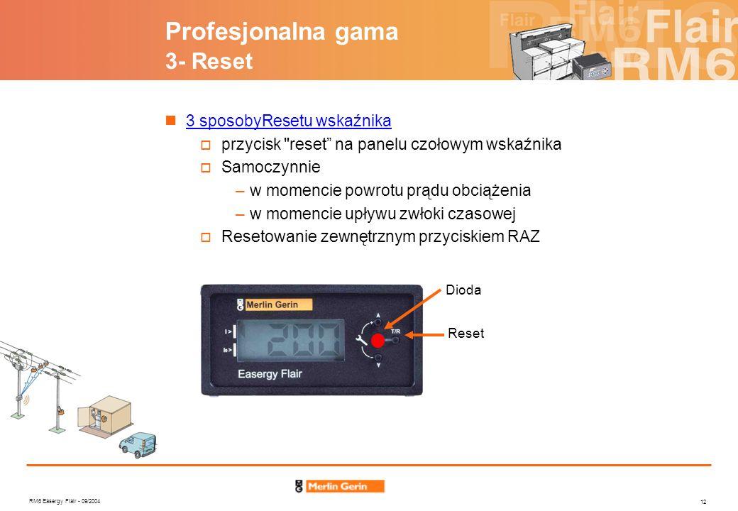 RM6 Easergy Flair - 09/2004 12 Profesjonalna gama 3- Reset 3 sposobyResetu wskaźnika przycisk