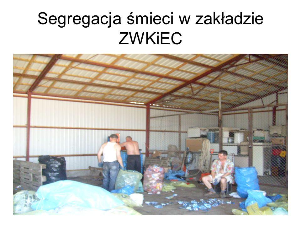 Segregacja śmieci w zakładzie ZWKiEC