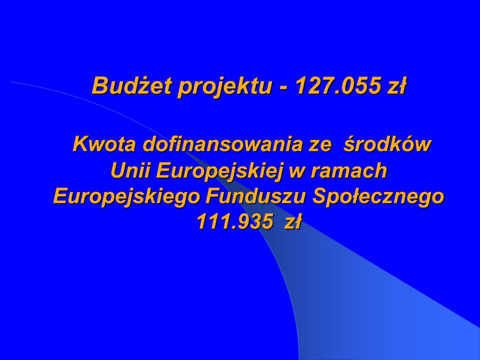 Budżet projektu - 127.055 zł Kwota dofinansowania ze środków Unii Europejskiej w ramach Europejskiego Funduszu Społecznego 111.935 zł