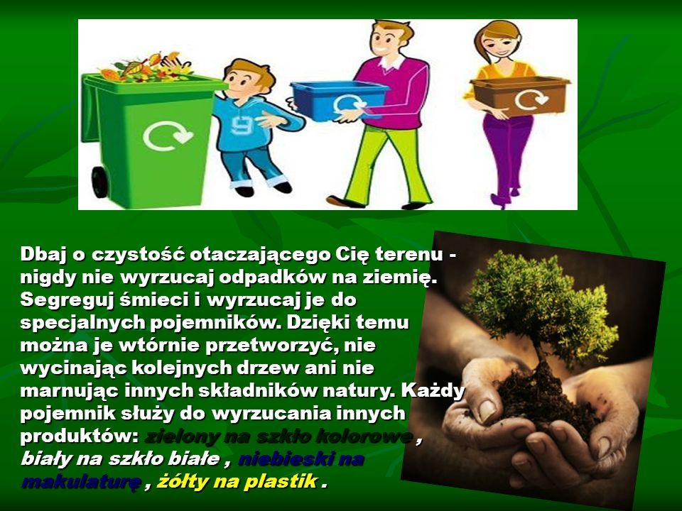 Dbaj o czystość otaczającego Cię terenu - nigdy nie wyrzucaj odpadków na ziemię. Segreguj śmieci i wyrzucaj je do specjalnych pojemników. Dzięki temu