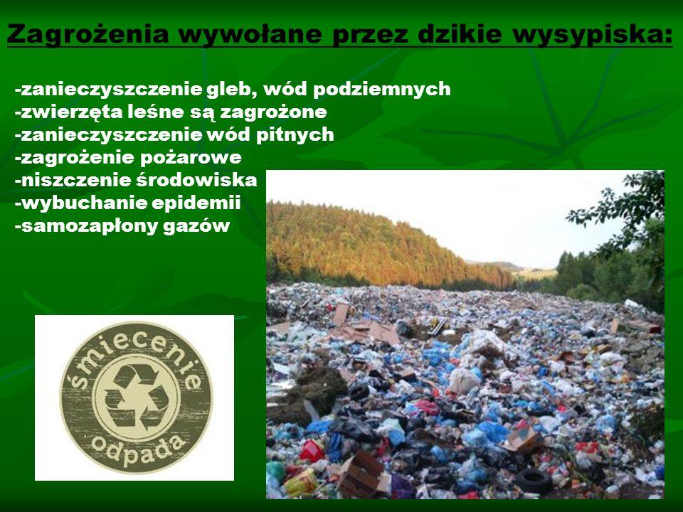 Zagrożenia wywołane przez dzikie wysypiska: -zanieczyszczenie gleb, wód podziemnych -zwierzęta leśne są zagrożone -zanieczyszczenie wód pitnych -zagro