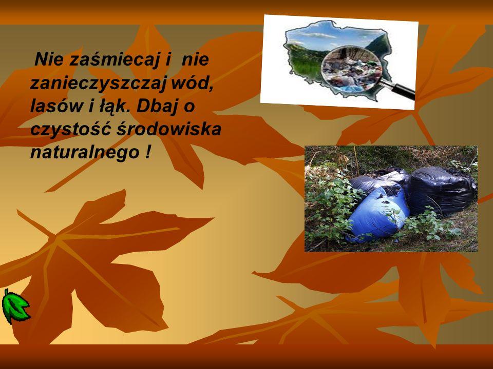 Nie zaśmiecaj i nie zanieczyszczaj wód, lasów i łąk. Dbaj o czystość środowiska naturalnego !