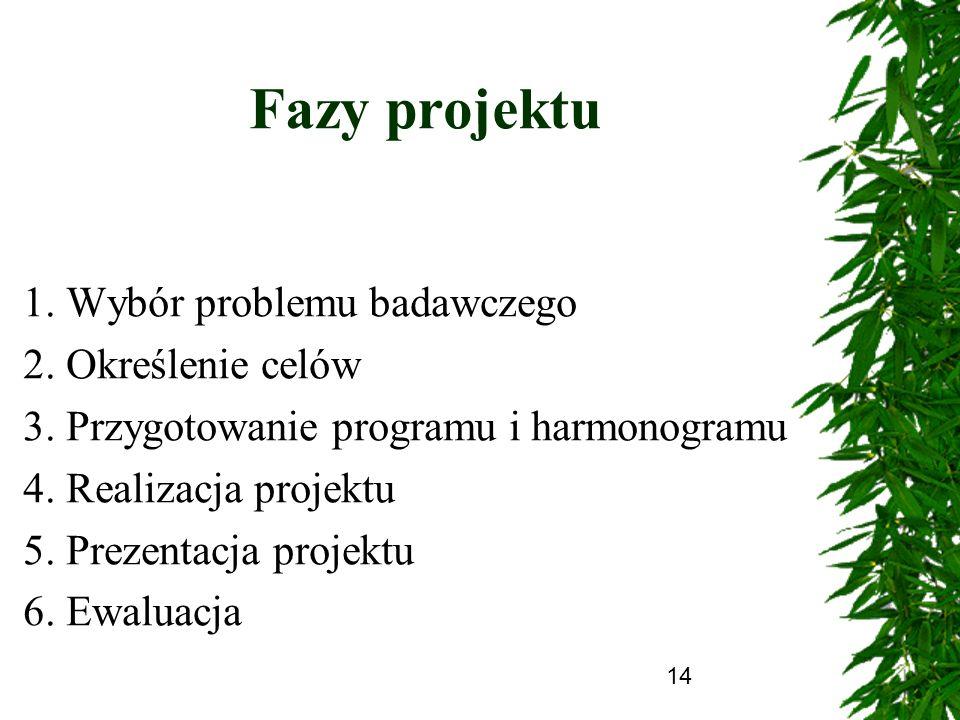 14 Fazy projektu 1. Wybór problemu badawczego 2. Określenie celów 3. Przygotowanie programu i harmonogramu 4. Realizacja projektu 5. Prezentacja proje