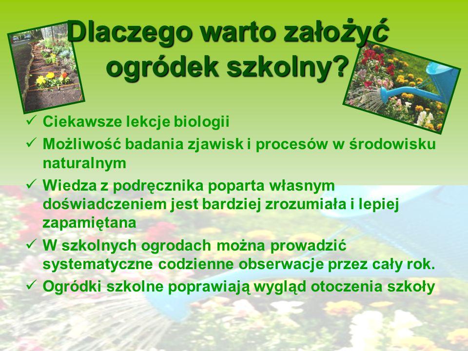 Ogródek szkolny Ogród szkolny jest wspaniałym uzupełnieniem pracowni biologicznej czy przyrodniczej. Wielu pedagogów podkreślało walory edukacyjne i w