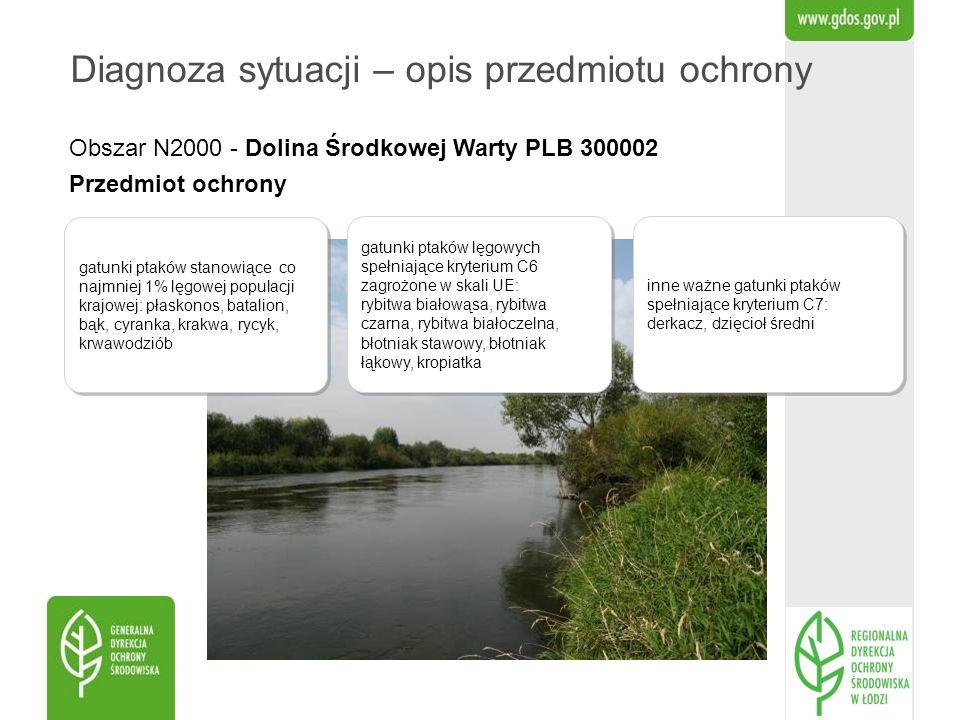 Obszar N2000 - Dolina Środkowej Warty PLB 300002 Przedmiot ochrony Diagnoza sytuacji – opis przedmiotu ochrony gatunki ptaków stanowiące co najmniej 1