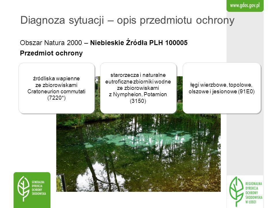 Obszar Natura 2000 – Niebieskie Źródła PLH 100005 Przedmiot ochrony Diagnoza sytuacji – opis przedmiotu ochrony źródliska wapienne ze zbiorowiskami Cr