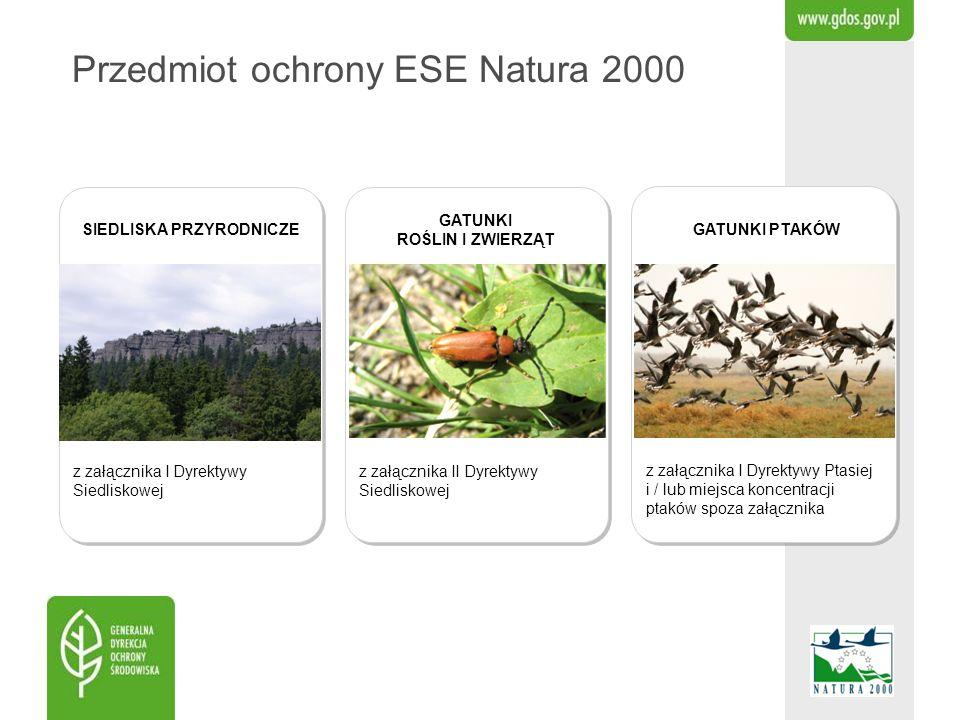 Przedmiot ochrony ESE Natura 2000 z załącznika II Dyrektywy Siedliskowej z załącznika I Dyrektywy Ptasiej i / lub miejsca koncentracji ptaków spoza za