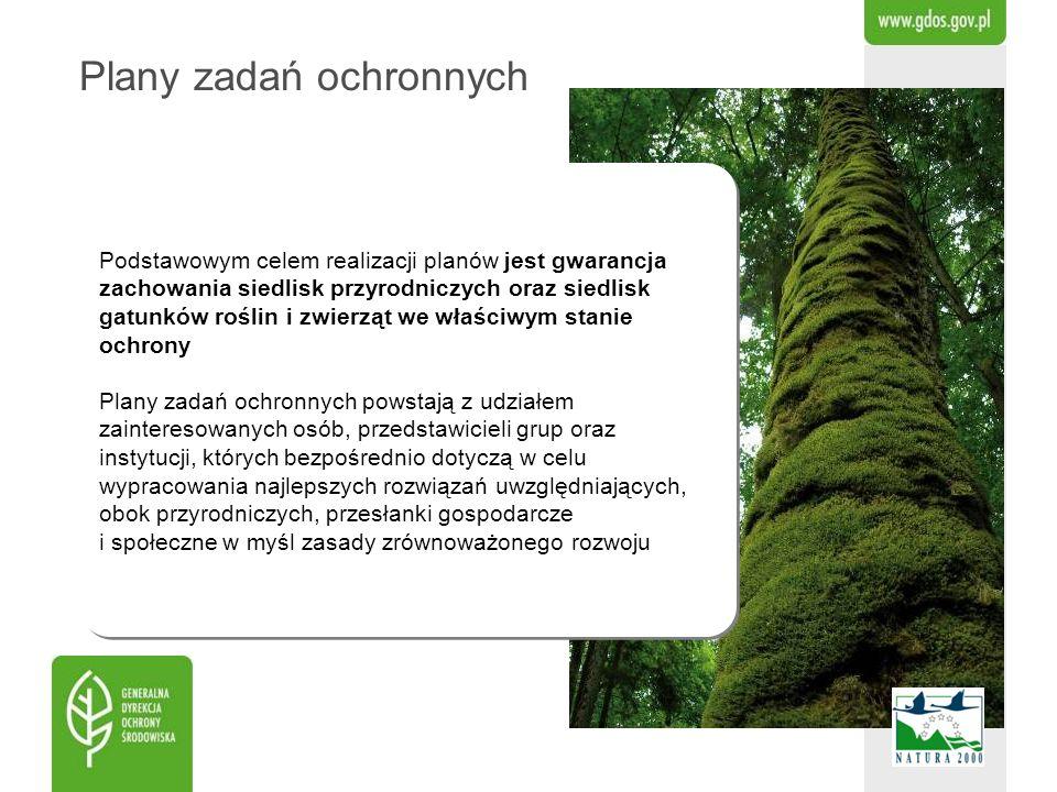 Podstawowym celem realizacji planów jest gwarancja zachowania siedlisk przyrodniczych oraz siedlisk gatunków roślin i zwierząt we właściwym stanie och