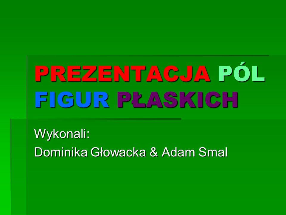 PREZENTACJA PÓL FIGUR PŁASKICH Wykonali: Dominika Głowacka & Adam Smal