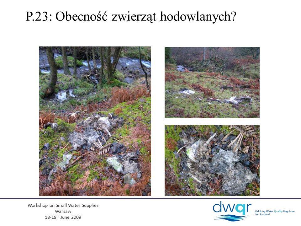 Workshop on Small Water Supplies Warsaw 18-19 th June 2009 P.23: Obecność zwierząt hodowlanych