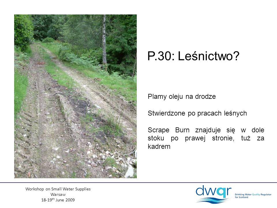 Workshop on Small Water Supplies Warsaw 18-19 th June 2009 Plamy oleju na drodze Stwierdzone po pracach leśnych Scrape Burn znajduje się w dole stoku po prawej stronie, tuż za kadrem P.30: Leśnictwo