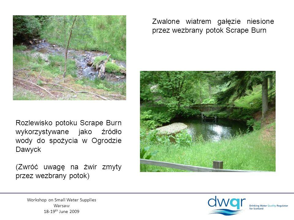 Workshop on Small Water Supplies Warsaw 18-19 th June 2009 Zwalone wiatrem gałęzie niesione przez wezbrany potok Scrape Burn Rozlewisko potoku Scrape Burn wykorzystywane jako źródło wody do spożycia w Ogrodzie Dawyck (Zwróć uwagę na żwir zmyty przez wezbrany potok)