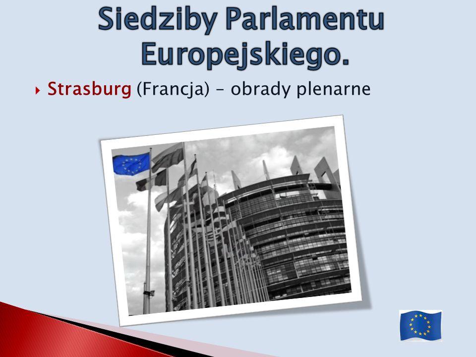 Strasburg (Francja) – obrady plenarne