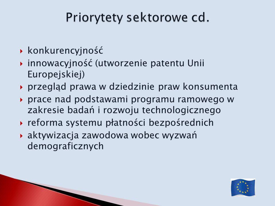 konkurencyjność innowacyjność (utworzenie patentu Unii Europejskiej) przegląd prawa w dziedzinie praw konsumenta prace nad podstawami programu ramoweg