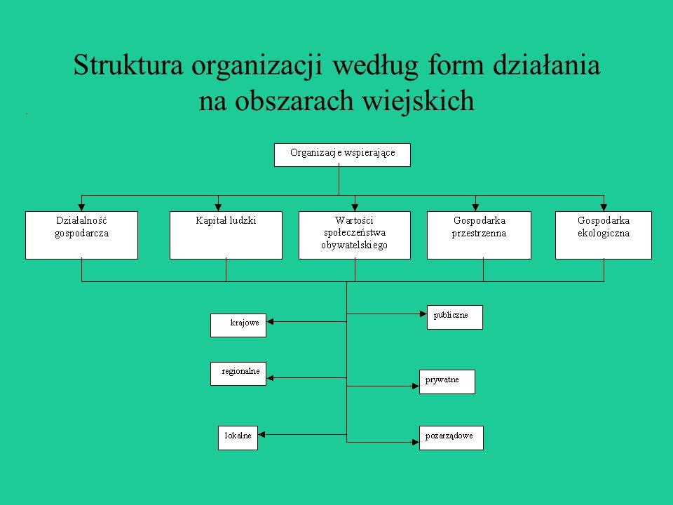 Struktura organizacji według form działania na obszarach wiejskich
