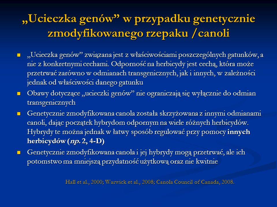 Ucieczka genów w przypadku genetycznie zmodyfikowanego rzepaku /canoli Ucieczka genów związana jest z właściwościami poszczególnych gatunków, a nie z
