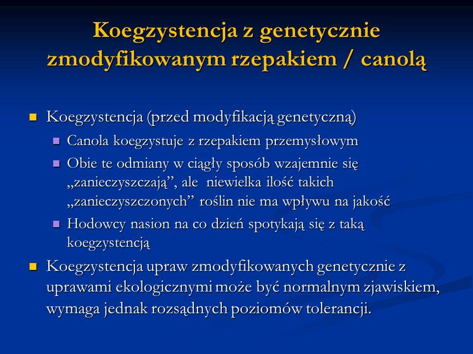 Koegzystencja z genetycznie zmodyfikowanym rzepakiem / canolą Koegzystencja (przed modyfikacją genetyczną ) Koegzystencja (przed modyfikacją genetyczn
