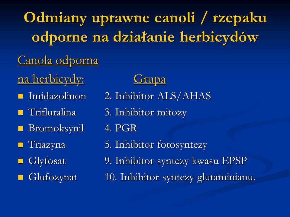 Odmiany uprawne canoli / rzepaku odporne na działanie herbicydów Canola odporna na herbicydy:Grupa Imidazolinon 2. Inhibitor ALS/AHAS Imidazolinon 2.