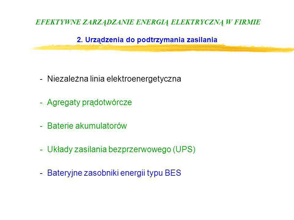 EFEKTYWNE ZARZĄDZANIE ENERGIĄ ELEKTRYCZNĄ W FIRMIE 2. Urządzenia do podtrzymania zasilania -Niezależna linia elektroenergetyczna -Agregaty prądotwórcz