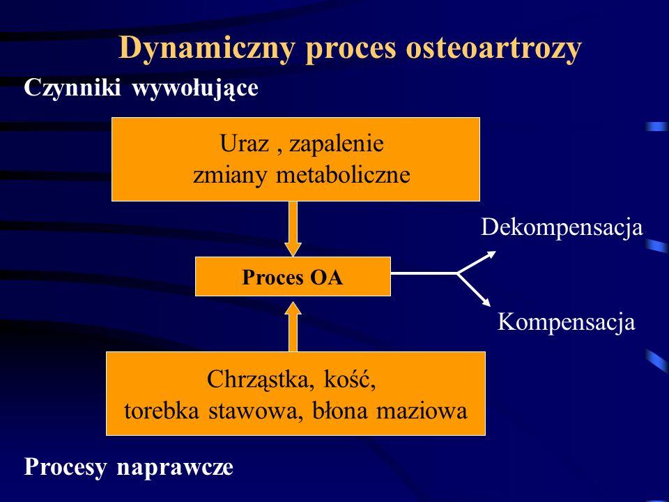 Chrząstka, kość, torebka stawowa, błona maziowa Dynamiczny proces osteoartrozy Czynniki wywołujące Uraz, zapalenie zmiany metaboliczne Proces OA Proce