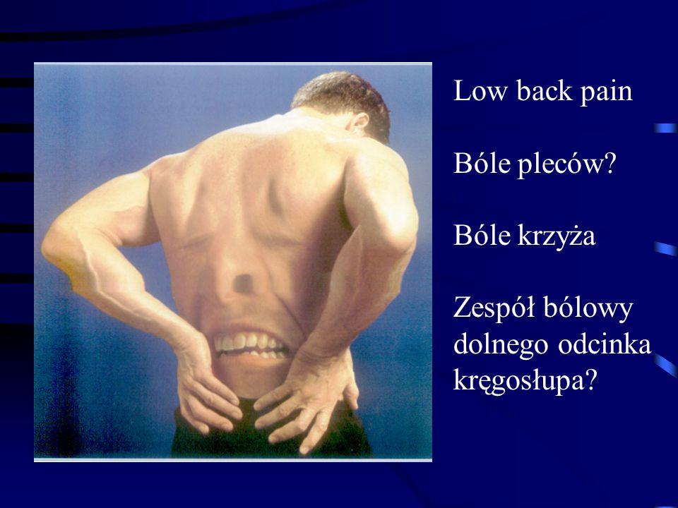 Low back pain Bóle pleców? Bóle krzyża Zespół bólowy dolnego odcinka kręgosłupa?