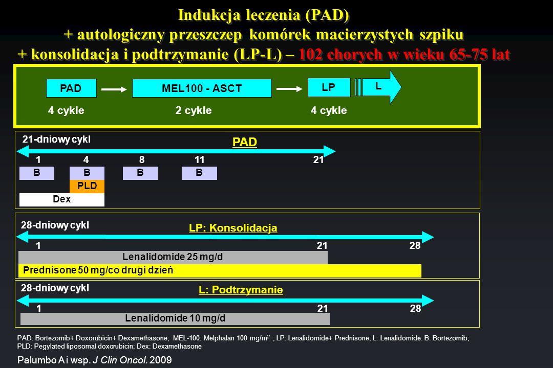 Indukcja leczenia (PAD) + autologiczny przeszczep komórek macierzystych szpiku + konsolidacja i podtrzymanie (LP-L) – 102 chorych w wieku 65-75 lat PA