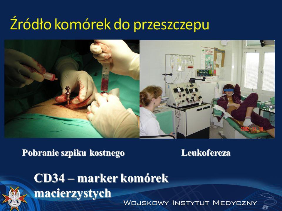 Pobranie szpiku kostnego Leukofereza CD34 – marker komórek macierzystych