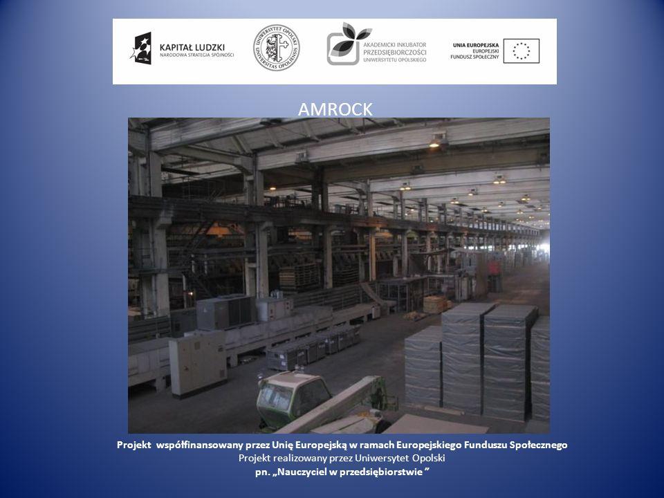 AMROCK Projekt współfinansowany przez Unię Europejską w ramach Europejskiego Funduszu Społecznego Projekt realizowany przez Uniwersytet Opolski pn. Na