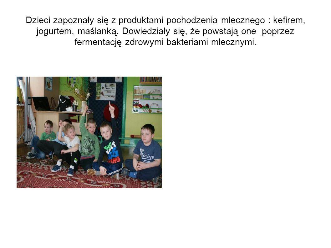 Serowy zawrót głowy W trakcie zajęć dzieci poznały różne rodzaje serów.