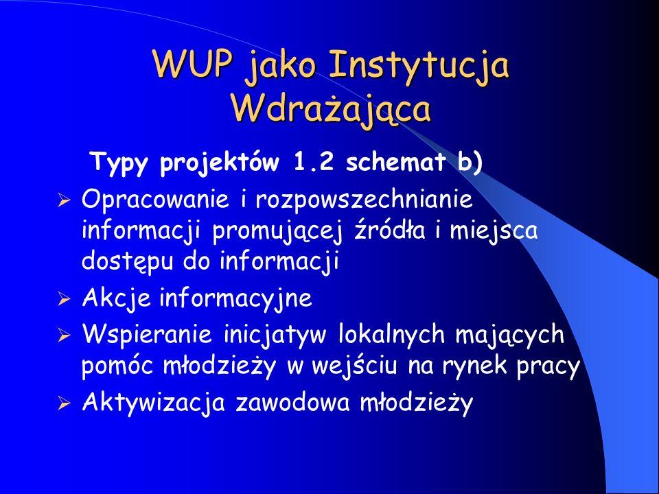 WUP jako Instytucja Wdrażająca Typy projektów 1.2 schemat b) Opracowanie i rozpowszechnianie informacji promującej źródła i miejsca dostępu do informa