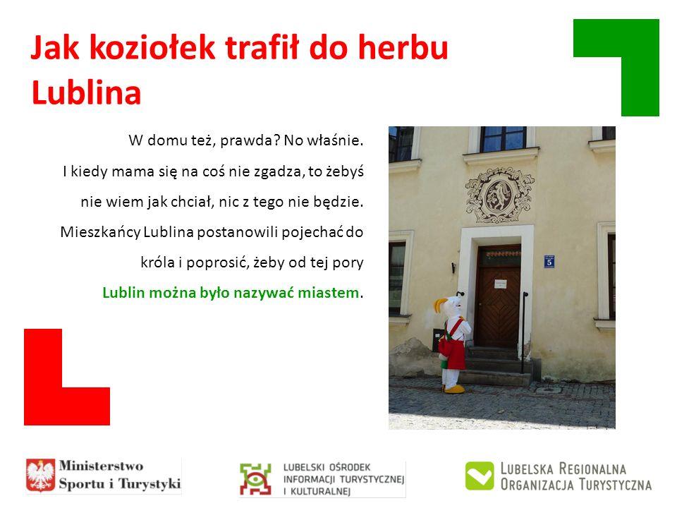 Jak koziołek trafił do herbu Lublina Proszę bardzo, zgadzam się – powiedział Władysław Łokietek, bo on wtedy był królem.
