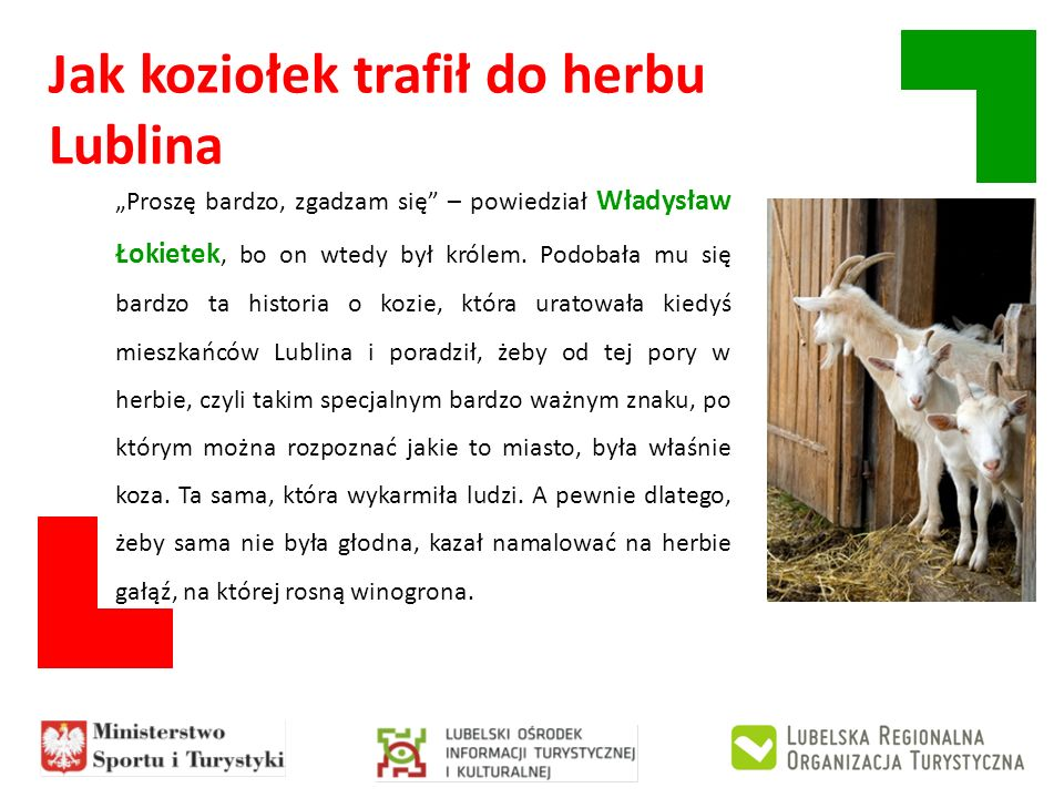 Jak koziołek trafił do herbu Lublina Proszę bardzo, zgadzam się – powiedział Władysław Łokietek, bo on wtedy był królem. Podobała mu się bardzo ta his
