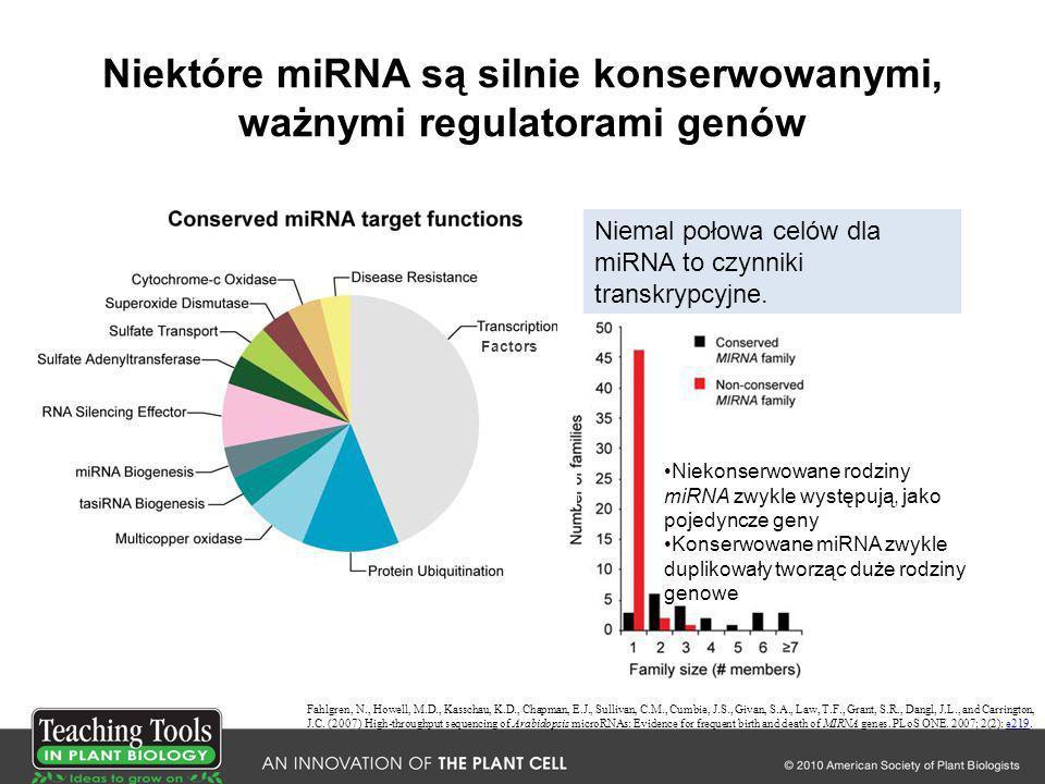 Niektóre miRNA są silnie konserwowanymi, ważnymi regulatorami genów Fahlgren, N., Howell, M.D., Kasschau, K.D., Chapman, E.J., Sullivan, C.M., Cumbie,