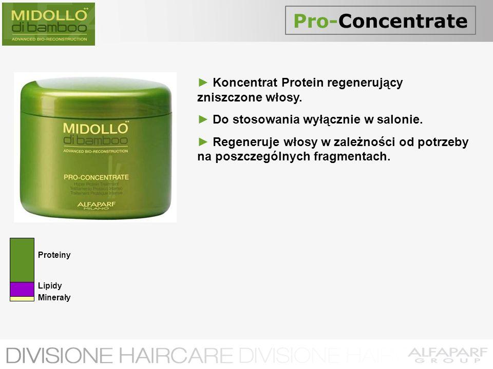 Pro-Concentrate Koncentrat Protein regenerujący zniszczone włosy. Do stosowania wyłącznie w salonie. Regeneruje włosy w zależności od potrzeby na posz