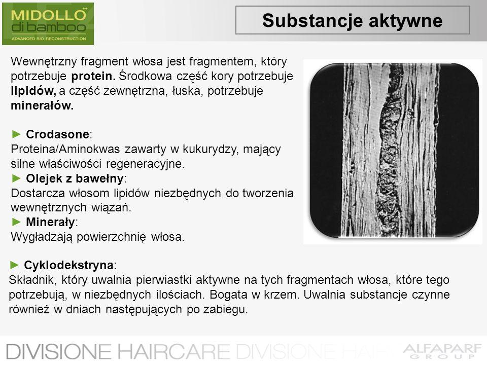 Substancje aktywne Wewnętrzny fragment włosa jest fragmentem, który potrzebuje protein. Środkowa część kory potrzebuje lipidów, a część zewnętrzna, łu