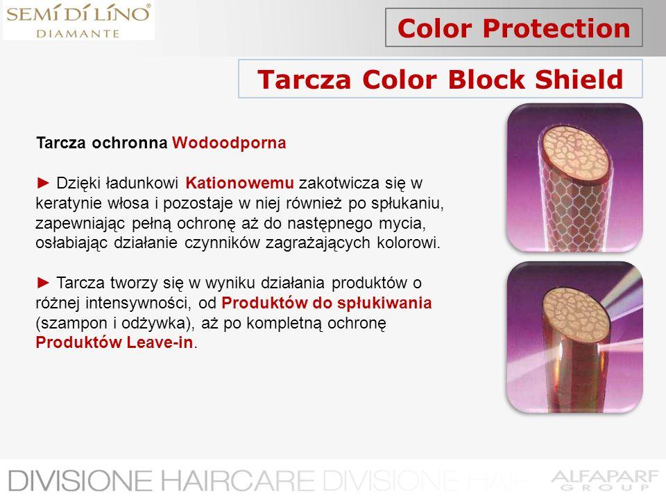 Color Protection Tarcza Color Block Shield Tarcza ochronna Wodoodporna Dzięki ładunkowi Kationowemu zakotwicza się w keratynie włosa i pozostaje w nie