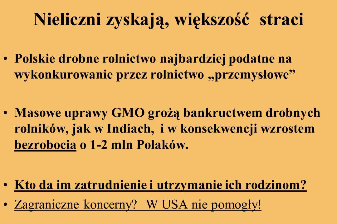 Nieliczni zyskają, większość straci Polskie drobne rolnictwo najbardziej podatne na wykonkurowanie przez rolnictwo przemysłowe Masowe uprawy GMO grożą bankructwem drobnych rolników, jak w Indiach, i w konsekwencji wzrostem bezrobocia o 1-2 mln Polaków.
