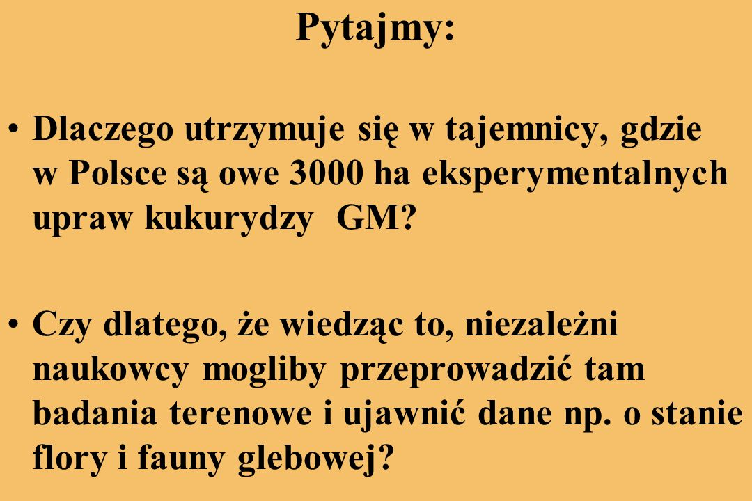 Pytajmy: Dlaczego utrzymuje się w tajemnicy, gdzie w Polsce są owe 3000 ha eksperymentalnych upraw kukurydzy GM.