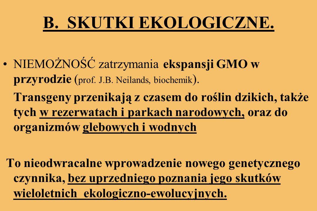 B.SKUTKI EKOLOGICZNE. NIEMOŻNOŚĆ zatrzymania ekspansji GMO w przyrodzie ( prof.