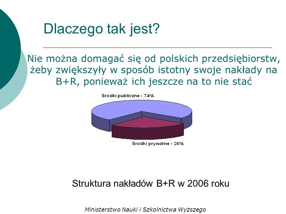 Nie można domagać się od polskich przedsiębiorstw, żeby zwiększyły w sposób istotny swoje nakłady na B+R, ponieważ ich jeszcze na to nie stać Struktura nakładów B+R w 2006 roku Dlaczego tak jest.