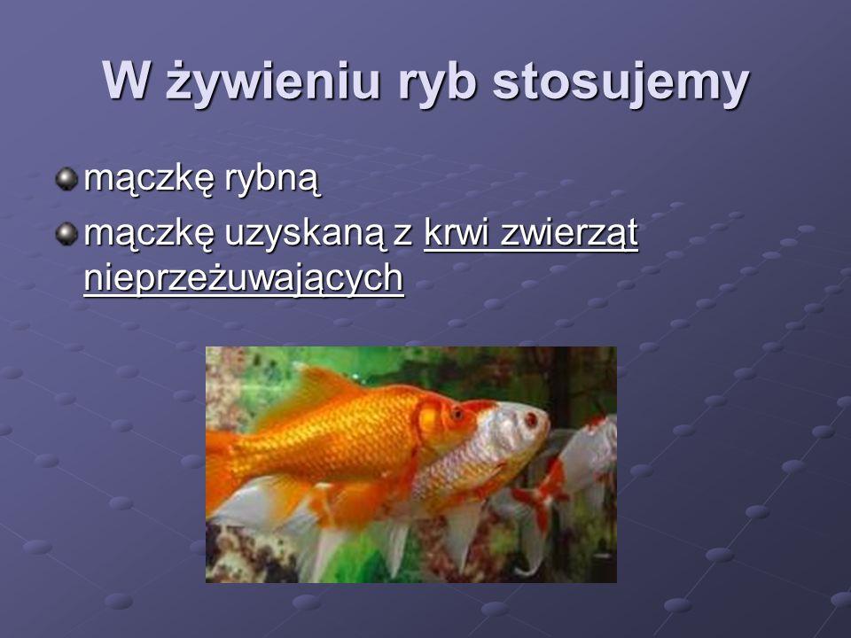 W żywieniu ryb stosujemy mączkę rybną mączkę uzyskaną z krwi zwierząt nieprzeżuwających