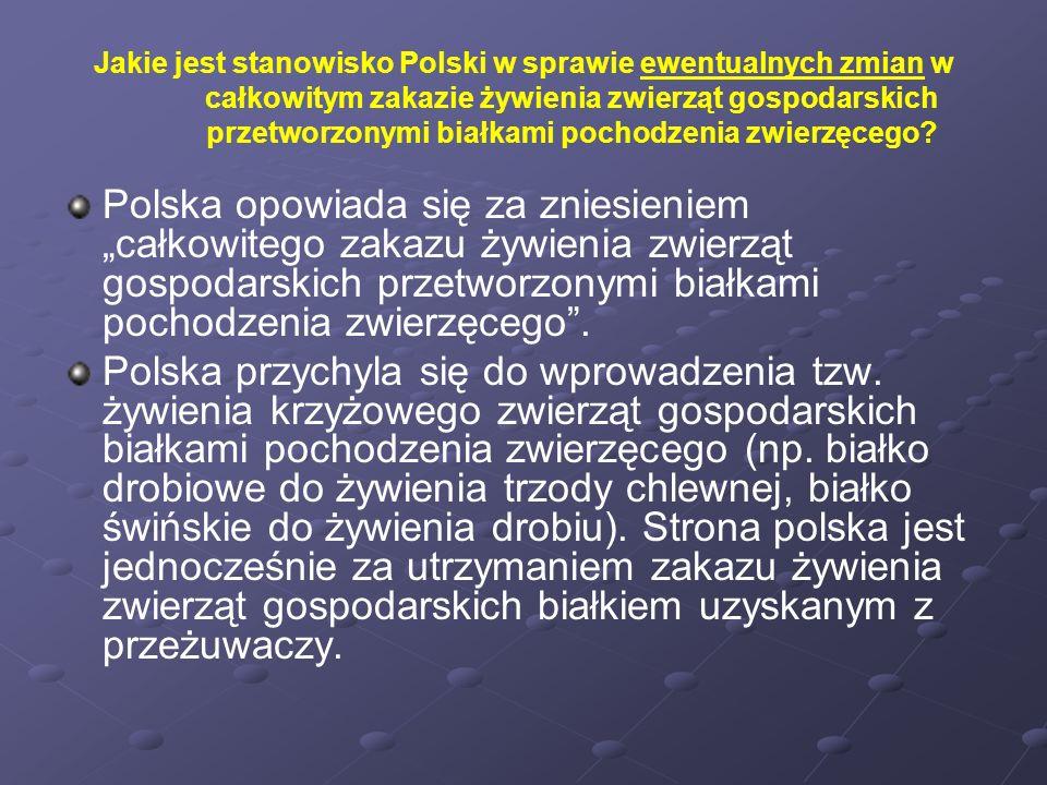 Jakie jest stanowisko Polski w sprawie ewentualnych zmian w całkowitym zakazie żywienia zwierząt gospodarskich przetworzonymi białkami pochodzenia zwi