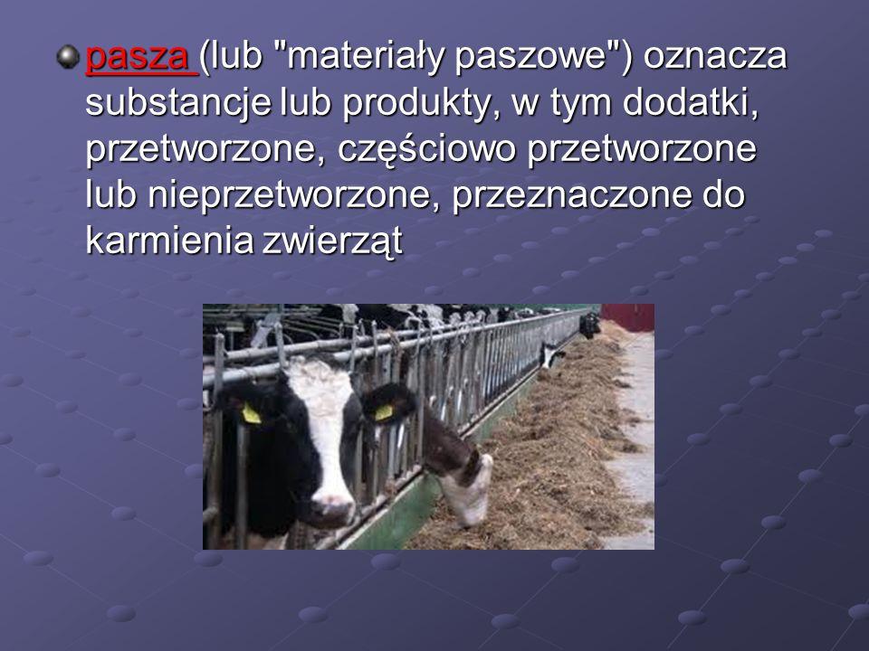 pasza (lub