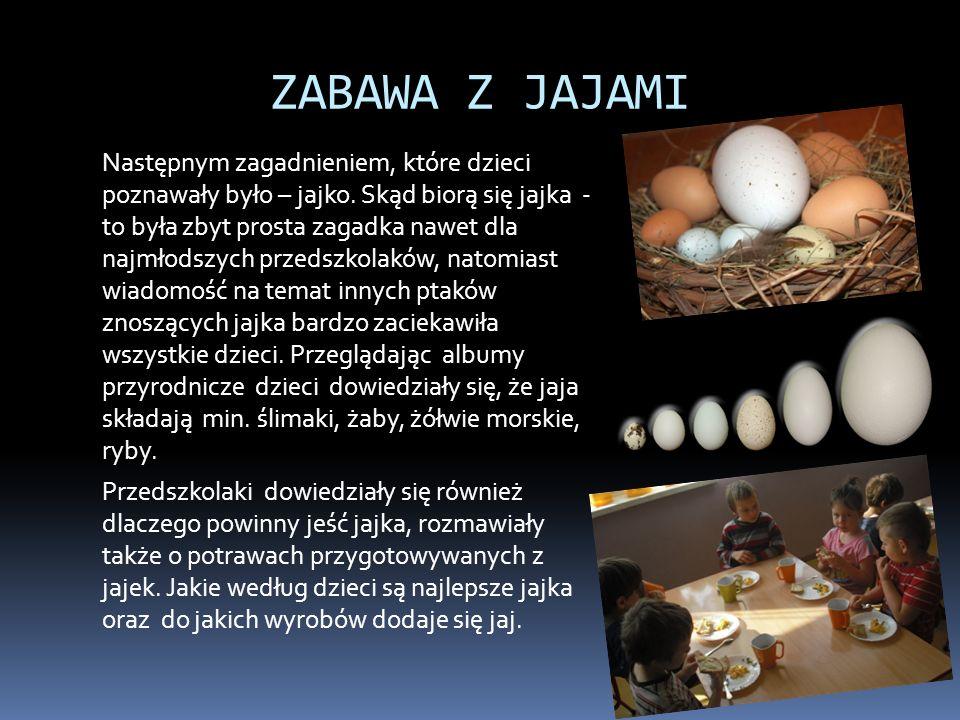 ZABAWA Z JAJAMI Następnym zagadnieniem, które dzieci poznawały było – jajko. Skąd biorą się jajka - to była zbyt prosta zagadka nawet dla najmłodszych
