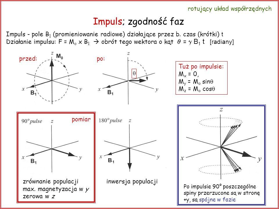 Impuls; zgodność faz Tuż po impulsie: M x = 0, M y = M o sin M z = M o cos Po impulsie 90° poszczególne spiny przerzucone są w stronę +y, są spójne w