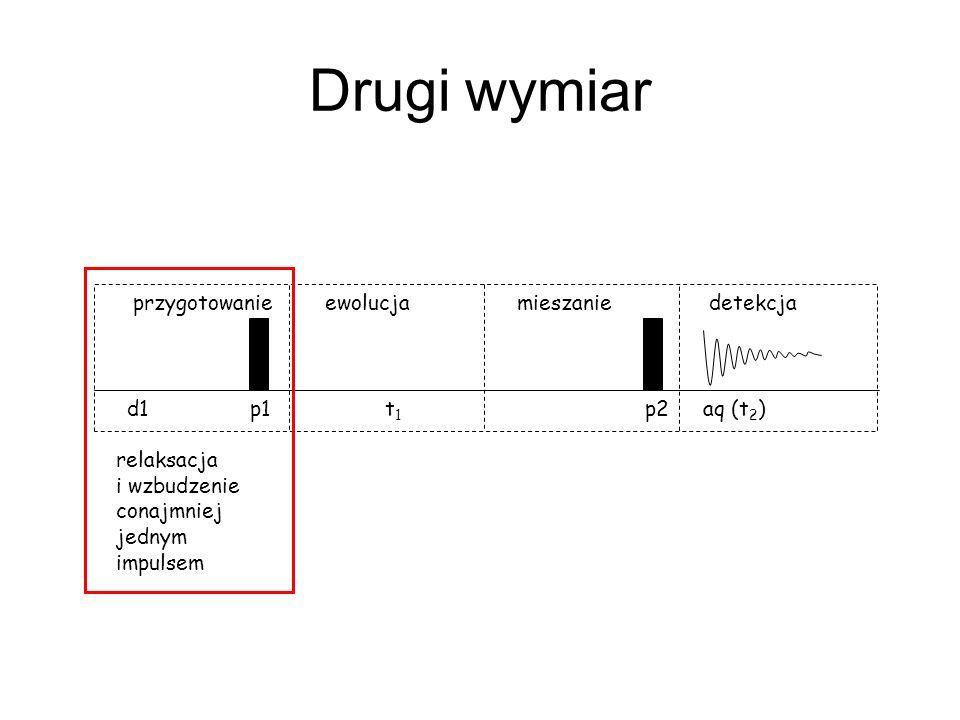 Drugi wymiar d1 p1 t 1 p2aq (t 2 ) przygotowanieewolucjamieszaniedetekcja relaksacja i wzbudzenie conajmniej jednym impulsem