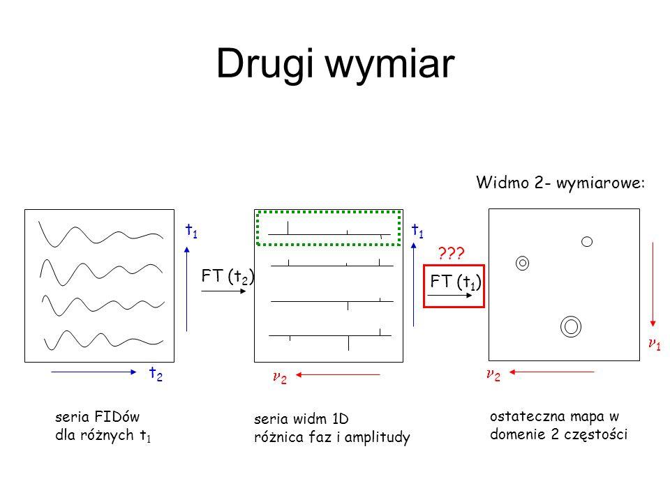 Drugi wymiar Widmo 2- wymiarowe: t2t2 t1t1 2 t1t1 1 2 FT (t 2 ) FT (t 1 ) seria FIDów dla różnych t 1 seria widm 1D różnica faz i amplitudy ostateczna