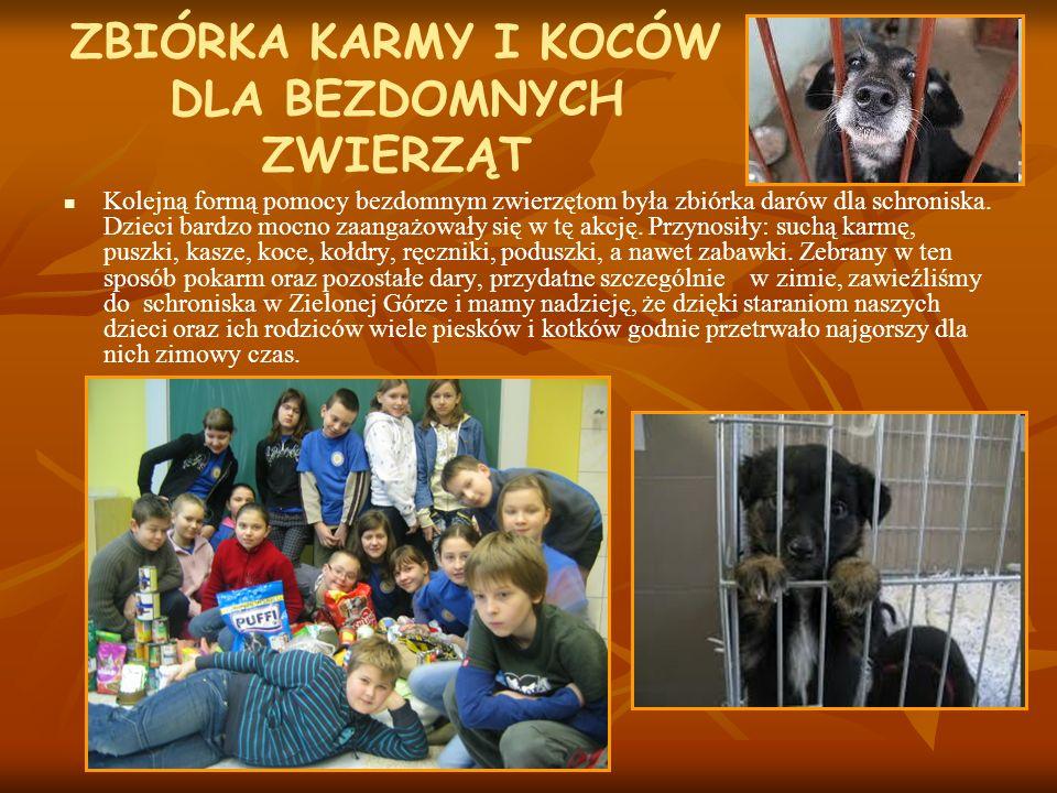 ZBIÓRKA KARMY I KOCÓW DLA BEZDOMNYCH ZWIERZĄT Kolejną formą pomocy bezdomnym zwierzętom była zbiórka darów dla schroniska. Dzieci bardzo mocno zaangaż